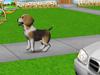 101 puppy pets screenshot small3 101любимчик. Играем с щенятами