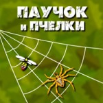 Паучок и Пчелки