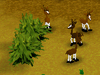 my exotic farm screenshot small2 Моя экзотическая ферма